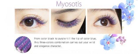 Farbwimpern luxury Flora-Eyeshadow Blau+Violett+Schwarz