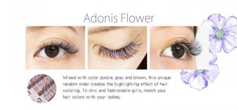 Farbwimpern luxury Flora-Eyeshadow Violett+Grau+Braun